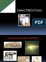 Leche 1 - Caracteristicas de La Leche - Upt