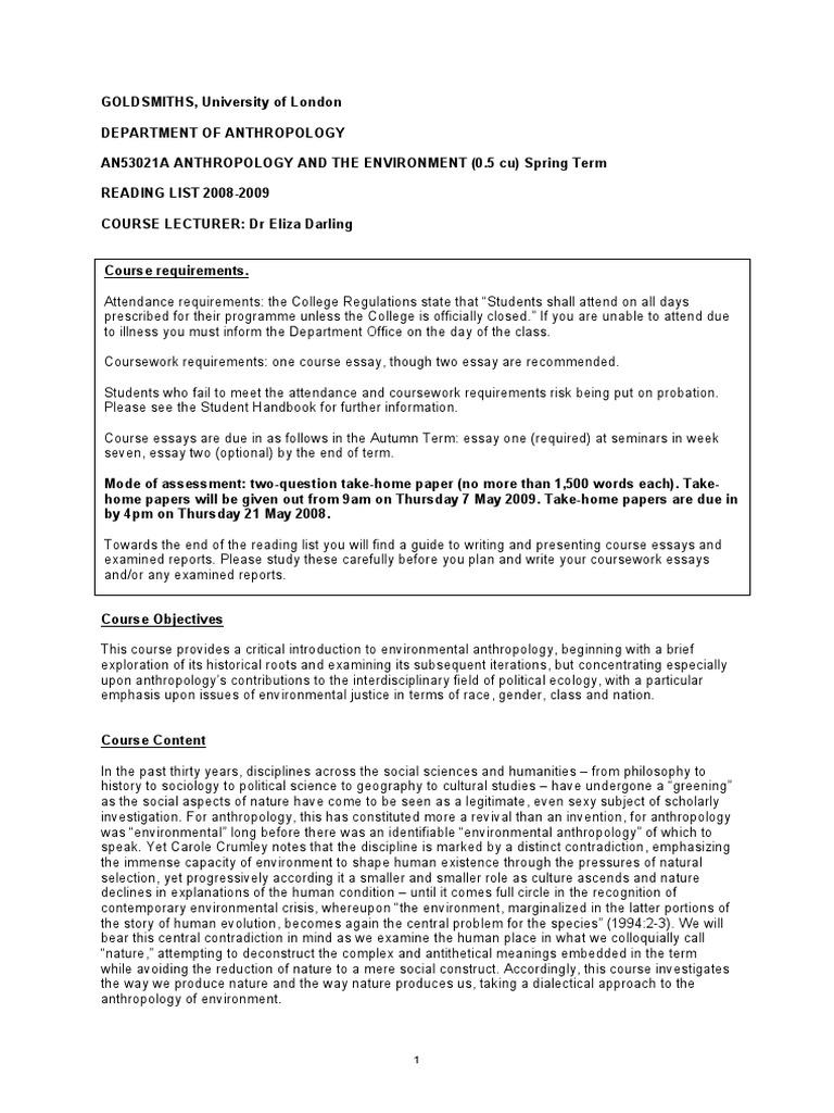 environmental report essay