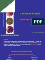 2) Sistema Digestivo - Morfologia
