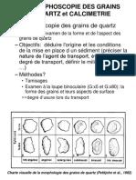 TP2 morphoscopie calcimétrie