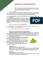 CONSTRUINDO_SEU_GERADOR_PIRAMIDAL.pdf
