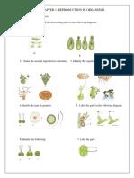 Diagrams Ch 1-16 Xii