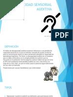 Ana Mª Sanchez Ropadiscapacidad Sensorial Auditiva