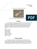 Saltwater Crocodile.pdf