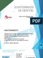 sistemasintegradosdegestionvdmr-120527214513-phpapp02