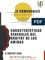 AMIBAS-COMENSALES