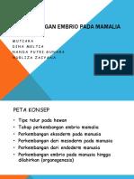 Perkembangan embrio pada mamalia.pptx