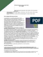 Lezione 4 Reumatologia Del 17-10-17
