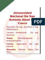 adsorcion.doc
