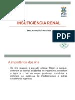 Aula 2 Insuficiência Renal Aguda, Crônica e Urolitíase