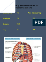 Fisiologia Re