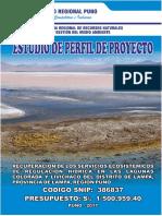 Perfil Recuperacion de Laguna Colorada.lampa Final