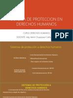 Sistema de Proteccion en Derechos Humanos