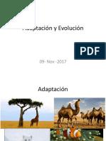 3. Adaptación y Evolución