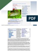 Animal World Com Encyclo Fresh Cichlid Auratus Php