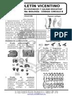 Biología Boletín 15 C-b Teorías Del Origen de La Vida