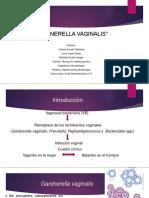 gardnerella (1)