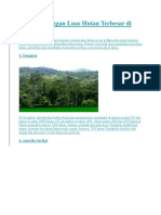 5 Negara Dengan Luas Hutan Terbesar Di Dunia