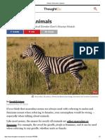 Gender of Animals in Spanish.pdf
