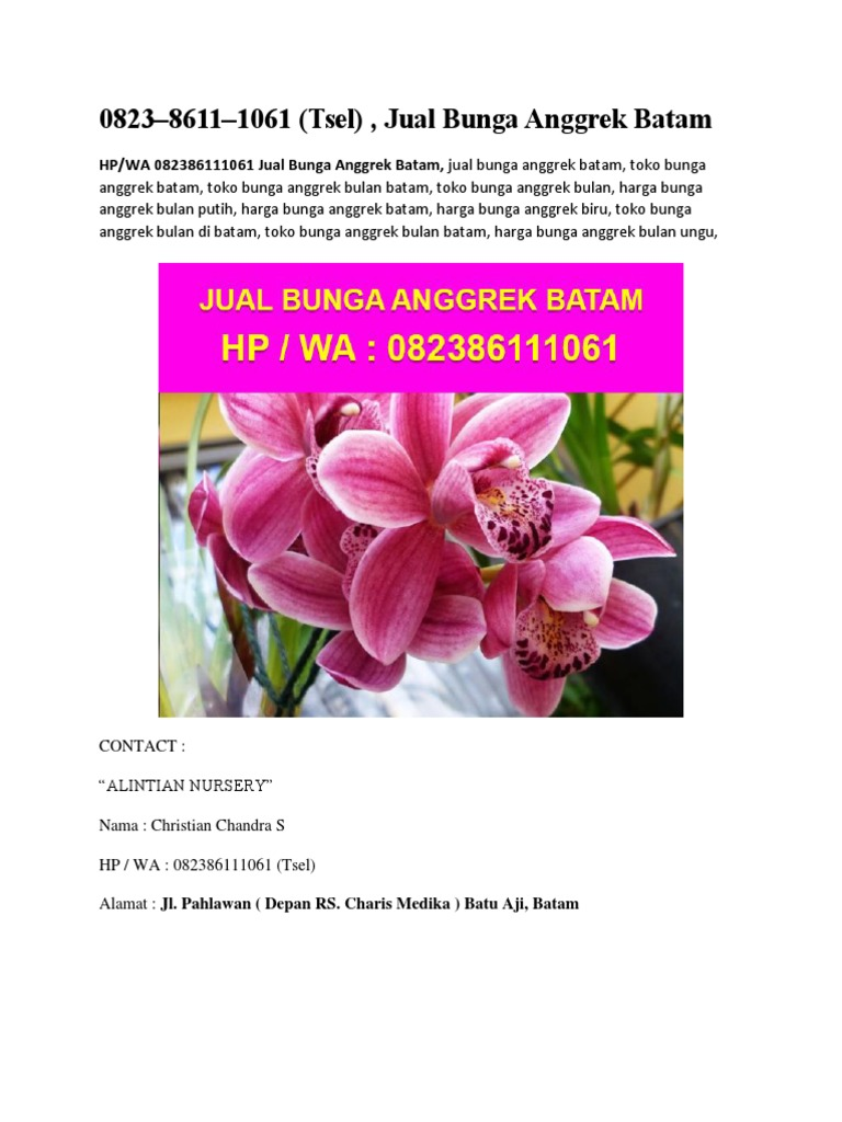 Download 6200 Koleksi Wallpaper Bunga Anggrek Bulan HD Terbaru