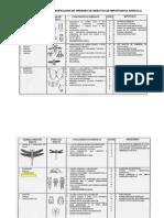 Cap 13. Guia Para La Clasificación de Órdenes de Lo Insectos