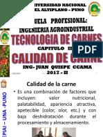 Cap_3_calidad_de_carnes.pdf;filename= UTF-8''Cap%203%20calidad%20de%20carnes
