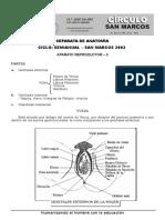 s02di-anat-SM.doc