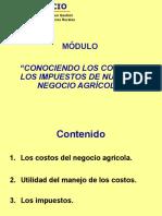 Presentación_Costos