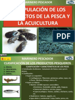 tema71manipulacinproductosdelapesca-140915124611-phpapp02