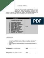 CARGO DE ENTREGA.docx