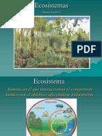 12. Ecosistemas