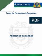 Primeiros Socorreos Cfs (1)
