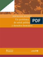 ar_insumos_mortalidadmaterna.pdf
