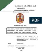 Tesis Efecto de Monitorizacion-cusco-kayra