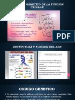 Control Genetico de La Funcion Celular
