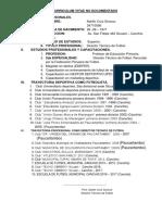 Curriculum Vitae No Documentado