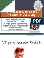 Exploración Pares Craneales Vii-xii