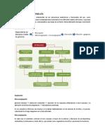 Podopatia diabética fisiopatologia