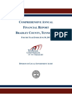 FY17 Comprehensive Annual Financial Report of Bradley County - TN Comptroller's Office