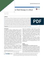 Contexto de Fluidoterapia en Pacientes Criticos