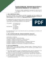 Reglamento de Elecciones Del Municipio 2014
