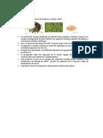 Obtención Por Procesos Tenologicos de Proteínas en Leguminosas