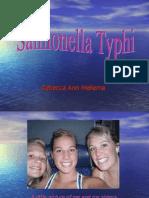 Salmonella Ty Phi