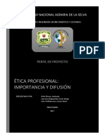 Ética Profesional - Perfil e Informe de Proyecto