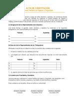 Acta de Constitución (1)