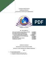 Laporan Pratikum Farter HT B1 Klp 4 NIM 22-29