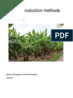 banana_report_final_version.pdf