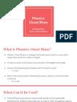 phonics onset and rime