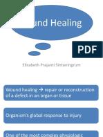 Wound Healing Edited