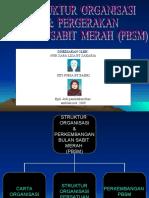 struktur organisasi dan pergerakan BSMM